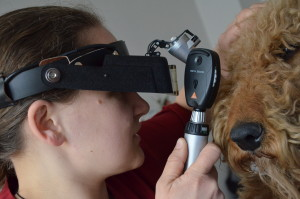 examen oftalmologic